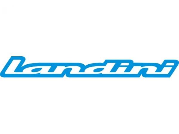 Landini